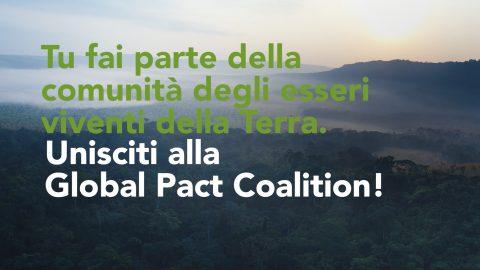 global pact coalition
